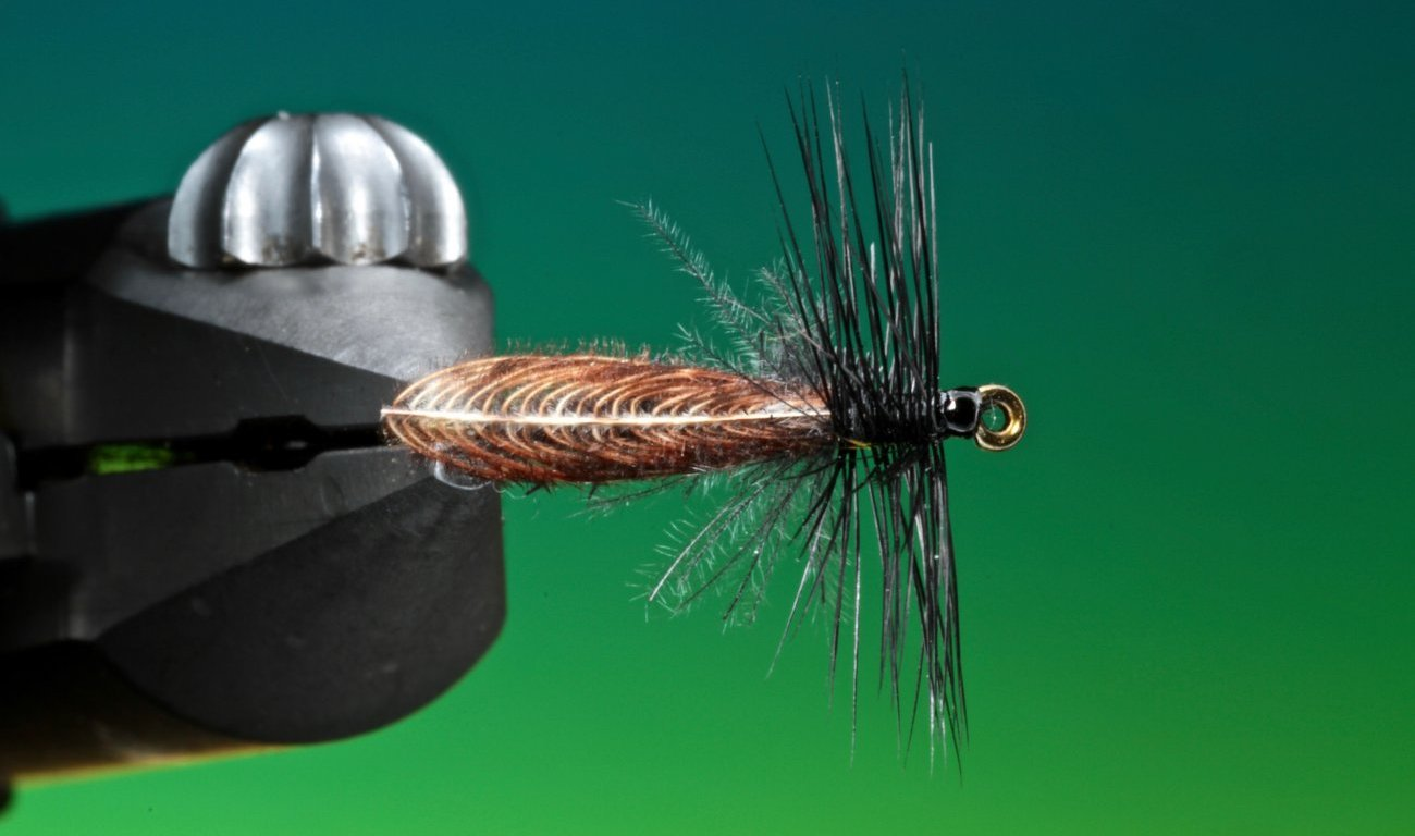 Wonder wing stonefly tied by BArry Ord Clarke