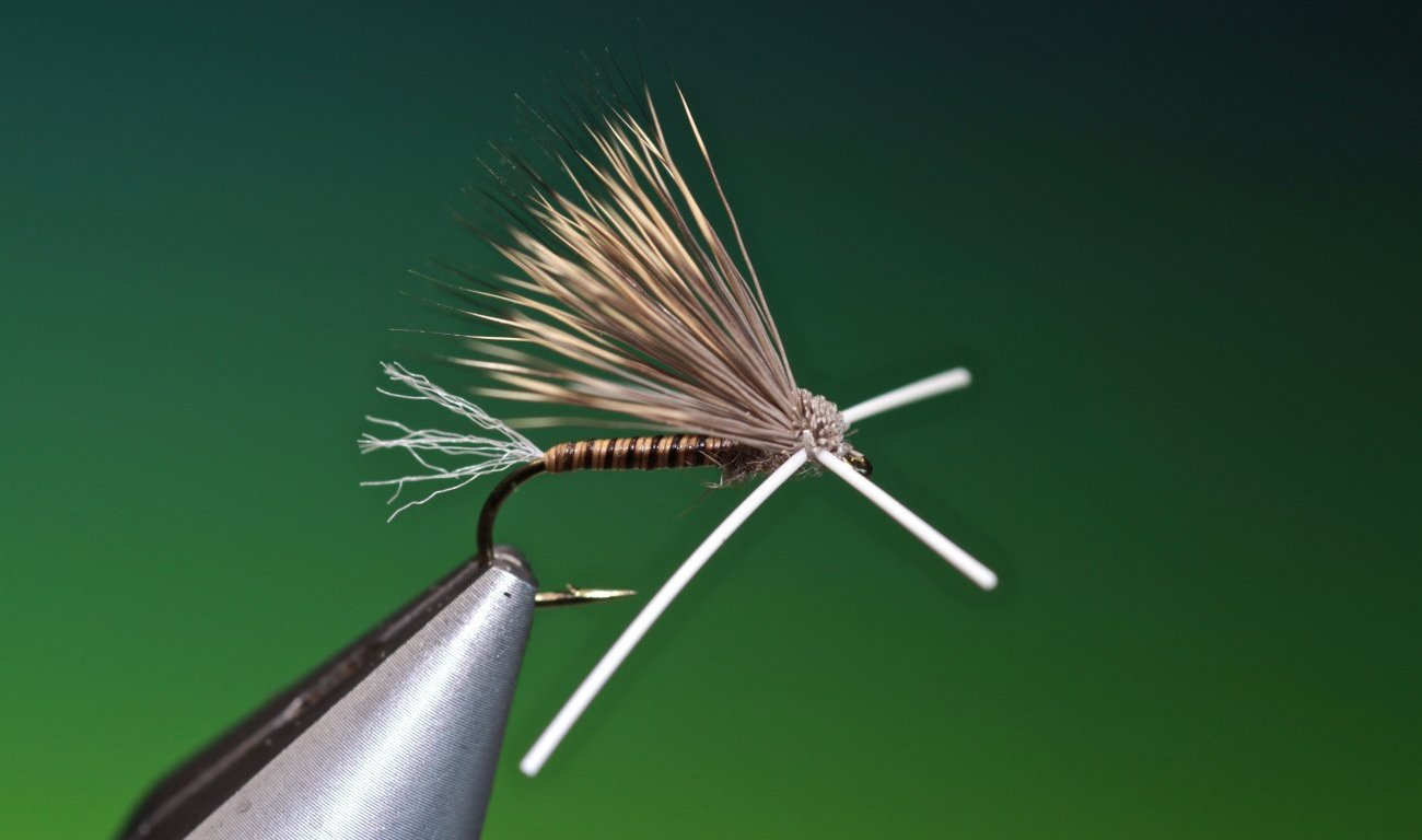 fly tying X-Factor Caddis dry fly