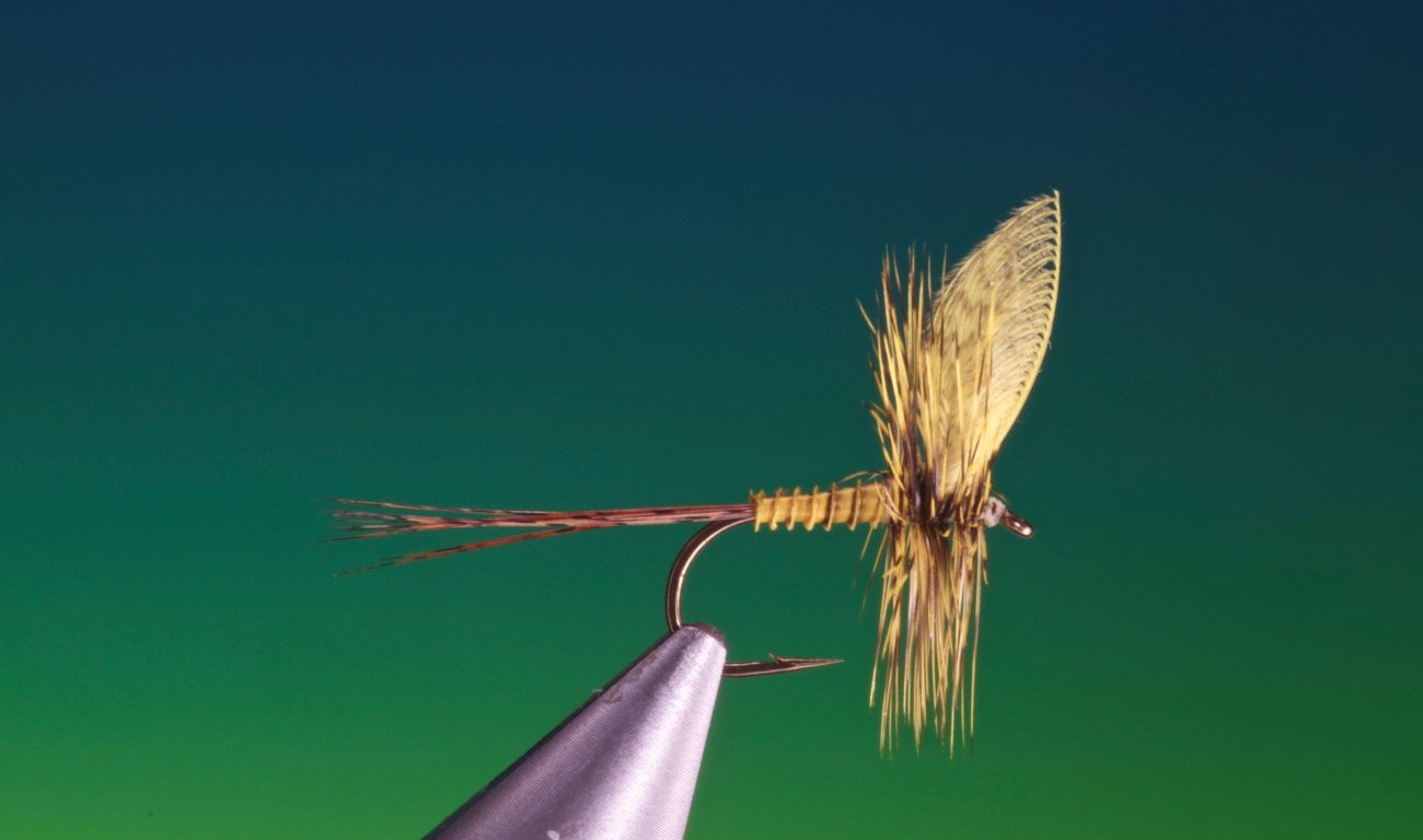 fly tying yellow mayfly video tutorial