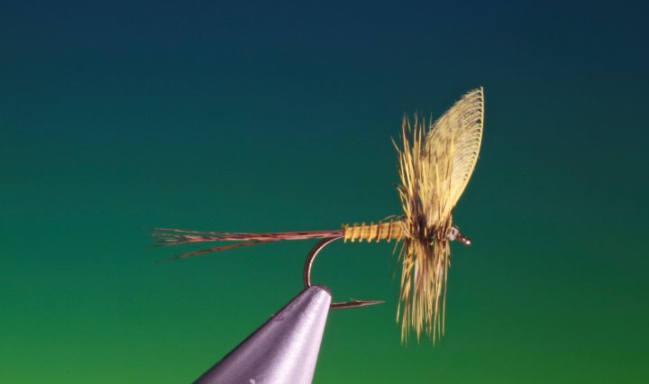 fly tying yellow mayfly video tutorial