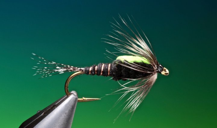 fly tying Black Martinez nymph