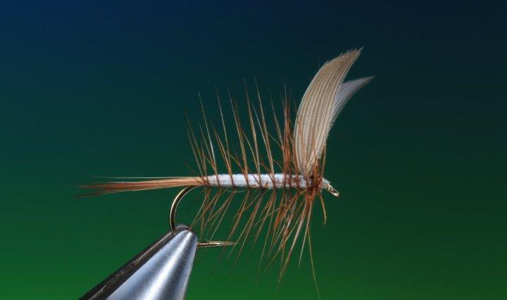 fly tying Beaverkill - American classic