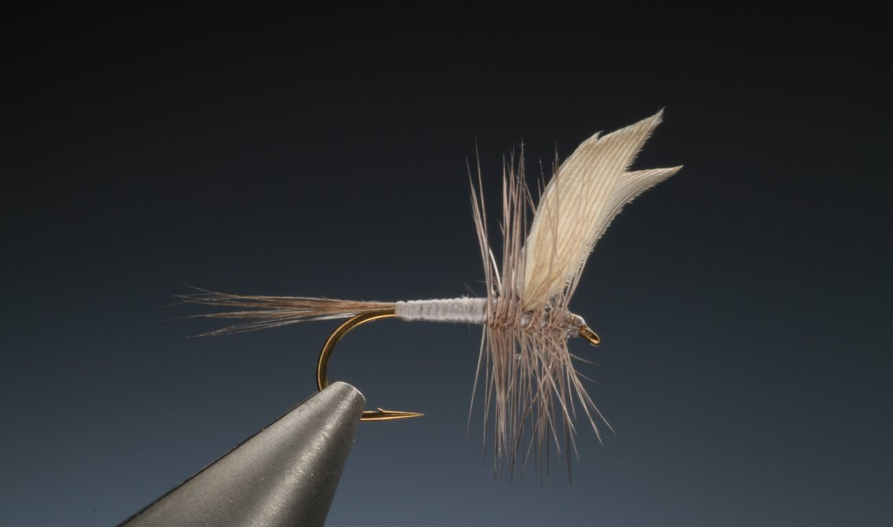 fly tying Quill wing blue dun dry fly