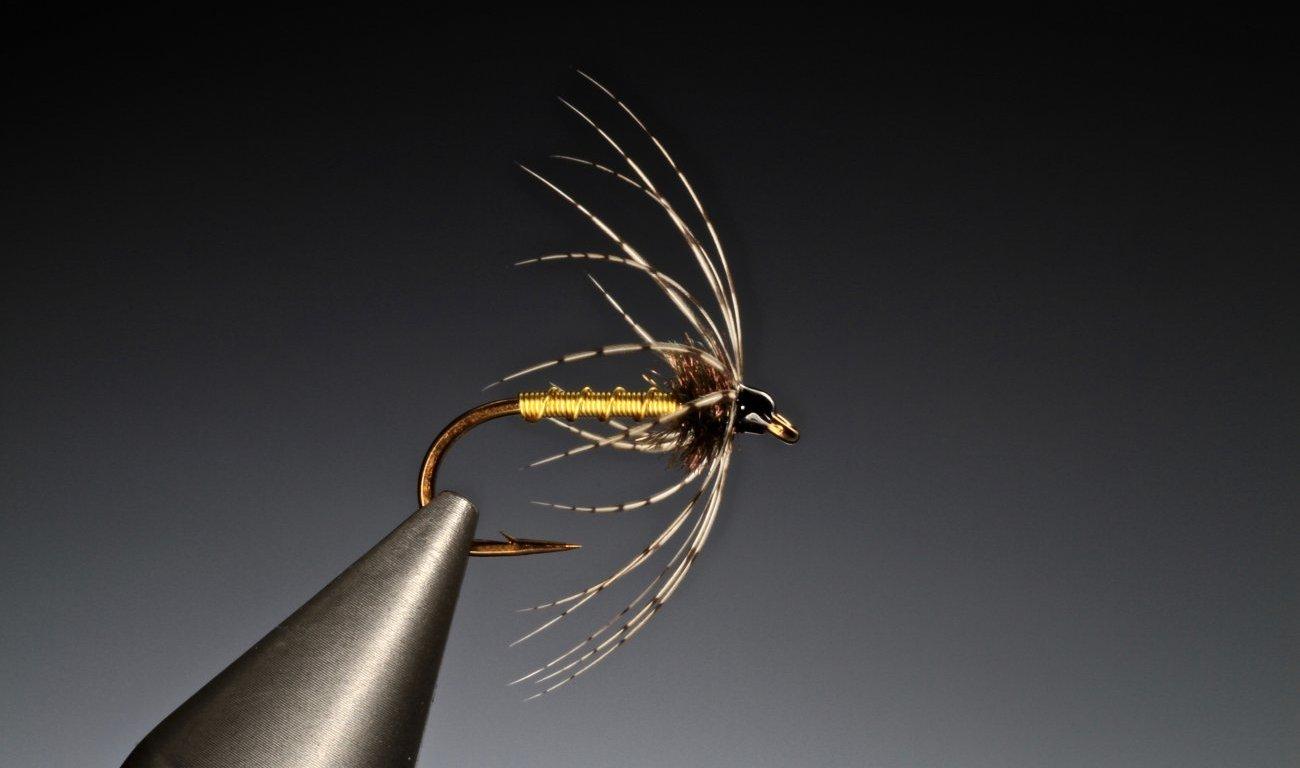 fly tying Brassie and partridge spider