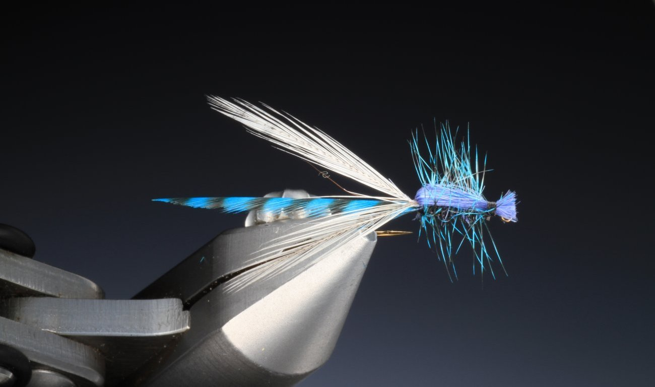 fly tying Adult Blue Damsel