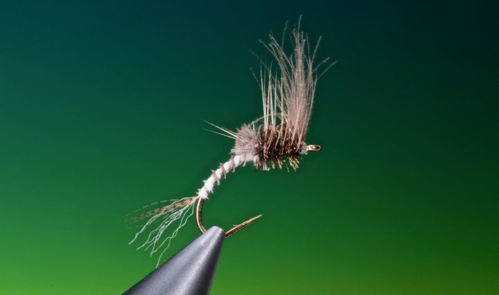 Fly tying video tutorial how to tie cripple mayfly emerger