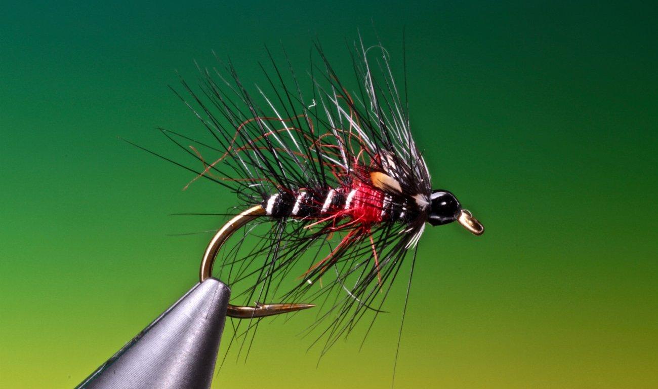 bibio fly tied by Barry Ord Clarke