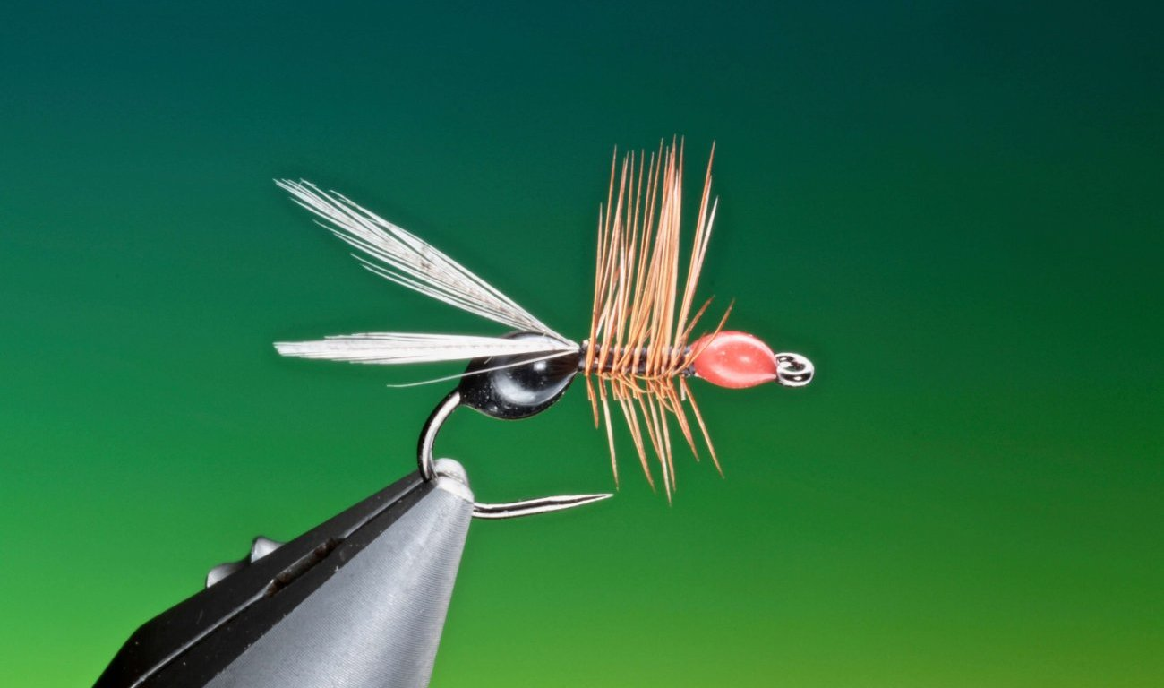 Hot glue ant fly tied by Barry Ord Clarke
