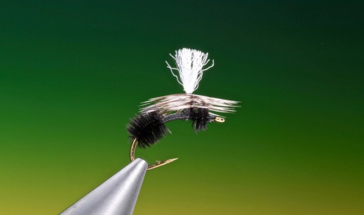 fly tying parachute ant