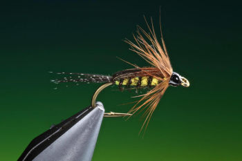 tellico nymph tied by Barry Ord Clarke