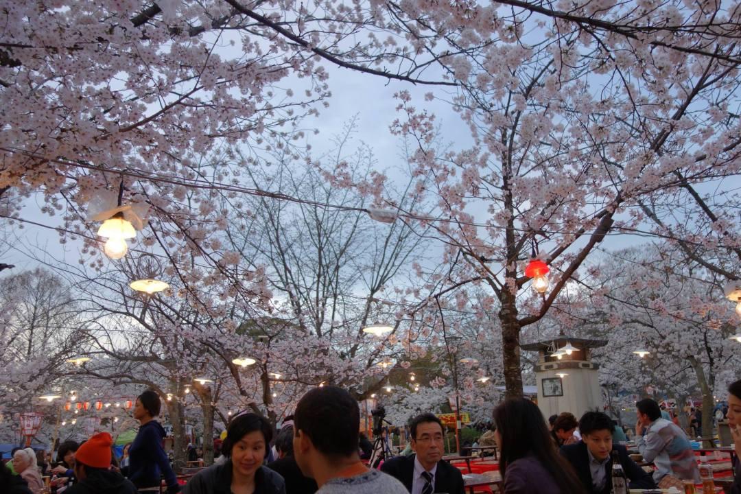 Beautiful scenery outside the Yasaka Shrine