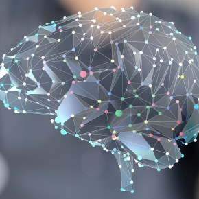 Brain Structure in Anorexia Nervosa
