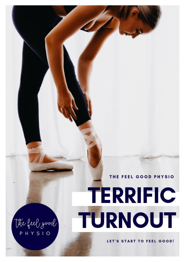 Terrific Turnout Program