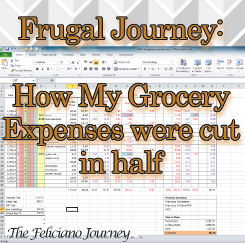 frugal journey groceries
