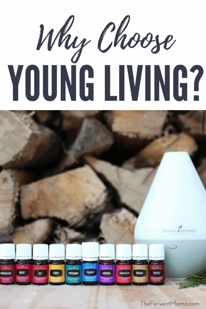 Why Choose Young Living? - The Fervent Mama: You should know that not all essential oils are the same. So you really should be asking yourself why you should choose Young Living.