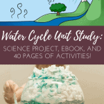 Water Cycle Unit Study: Why Does it Rain? - The Fervent Mama: Is your little one asking