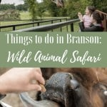 Skip the Branson, MO Zoos and go for a real adventure; Wild Animal Safari : The Fervent Mama- I'm dishing on Branson's best-kept secret, and *spoiler alert* it's not those lame Branson Zoo's. It's the adventure you'll get at Wild Animal Safari!
