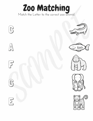 Zoo Animals Workbook (Pre K-Kindergarten)