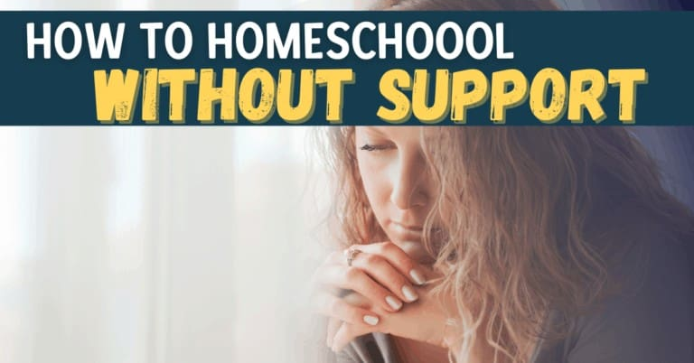 How to Homeschool Without Support