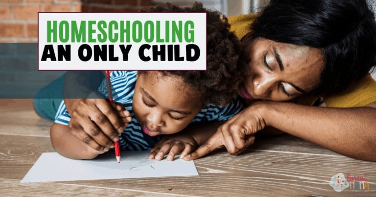 Tips for Homeschooling An Only Child Successfully