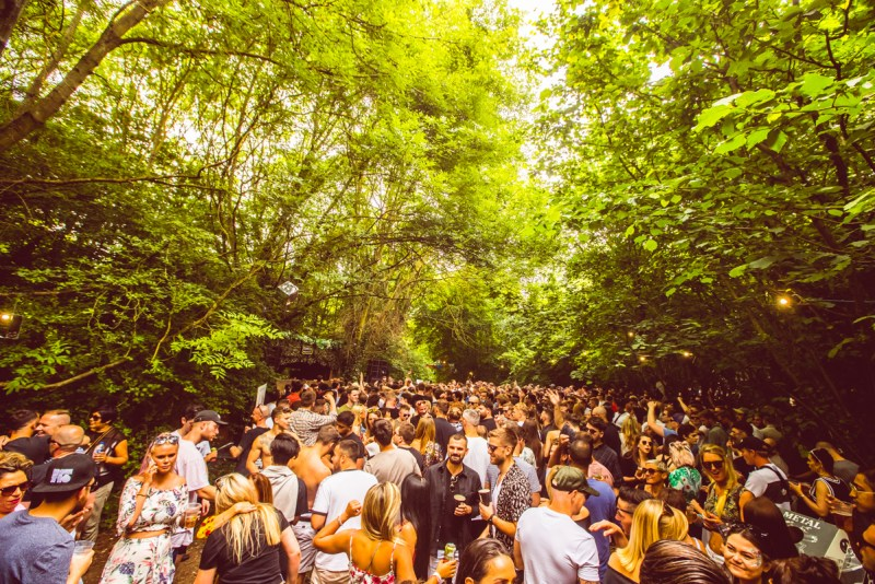 Junction 2 Crowd Trees