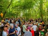 Alfresco Festival Forest Crowd