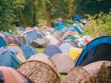 Festival forest campsite