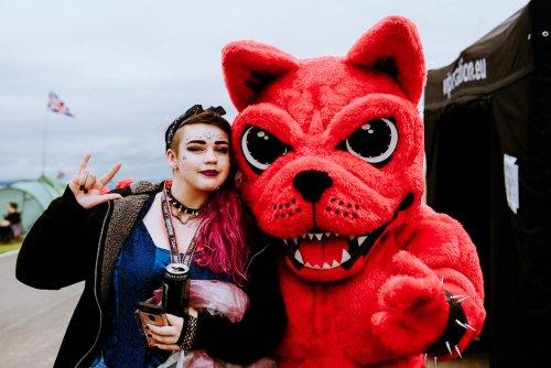 Download Festival Dog