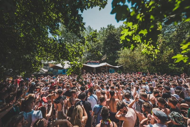 NASS Festival woods