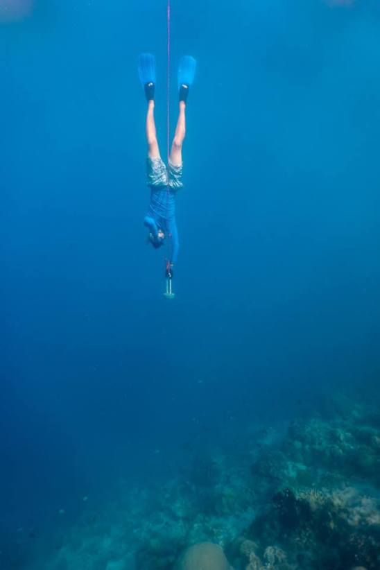 theficklefeet_freediving
