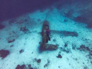 Plane Wreck, Moalboal, Cebu, Philippines