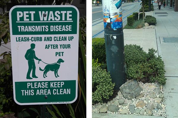 Dog sign public eduction