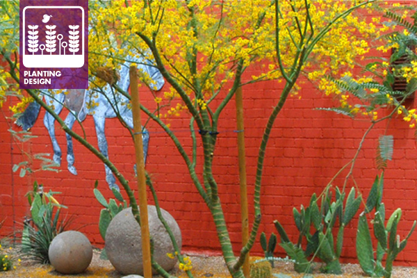 City Grocery Garden, Phoenix, AZ designed by Steve Martino