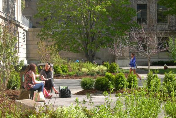 Cornell University's Mann Library Entrance