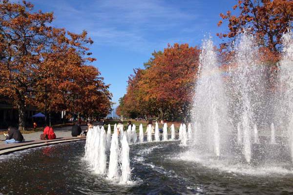 University of British Columbia image: Dean Gregory