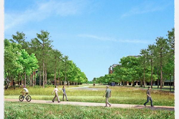 University of North Carolina, Carolina North image: courtesy of Hoerr Schaudt