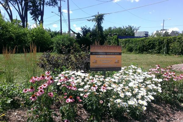 Neighborhood Strong Plantings image: Tim Garland