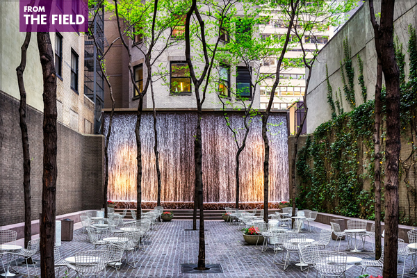 Paley Park in New York City image: RomanK Photography via Flickr