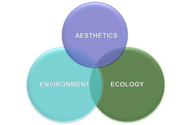 Figure 5: Aesthetic, environmental, and ecological balance of native turf polycultures image: David Hopman