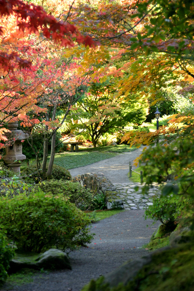 The Japanese Garden in the University of Washington's Botanic Gardens and Arboretum image: Douglas Easterly via Flickr