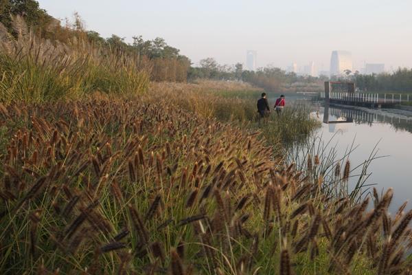 ASLA 2010 Professional General Design Award of Excellence. Shanghai Houtan Park: Landscape as a Living System, Shanghai, China. Turenscape and Peking University Graduate School of Landscape Architecture. / image: Kongjian Yu, FASLA