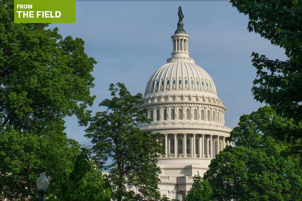 The Capitol, Washington, DC