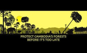 Prey Lang - It's Our Forest Too