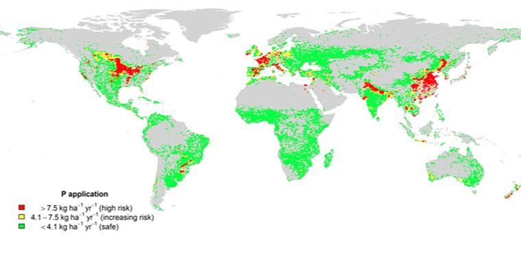 Phosphorus pollution in croplands.