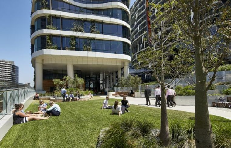 Gardens and healthy food are part of the story for Medibank's new offices