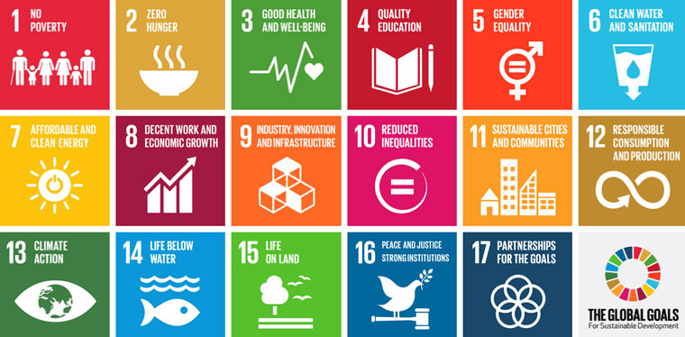 The global goals of sustainable development.