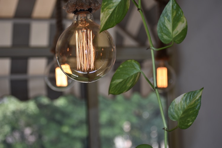 green lights, small business electricity