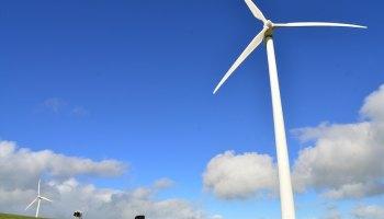 renewable energy Photo by Jonny Clow on Unsplash