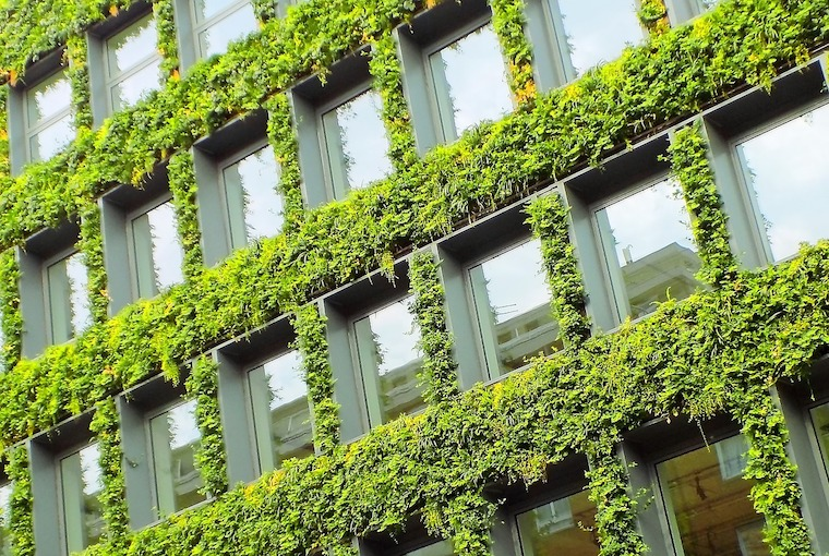 green building grass on wall