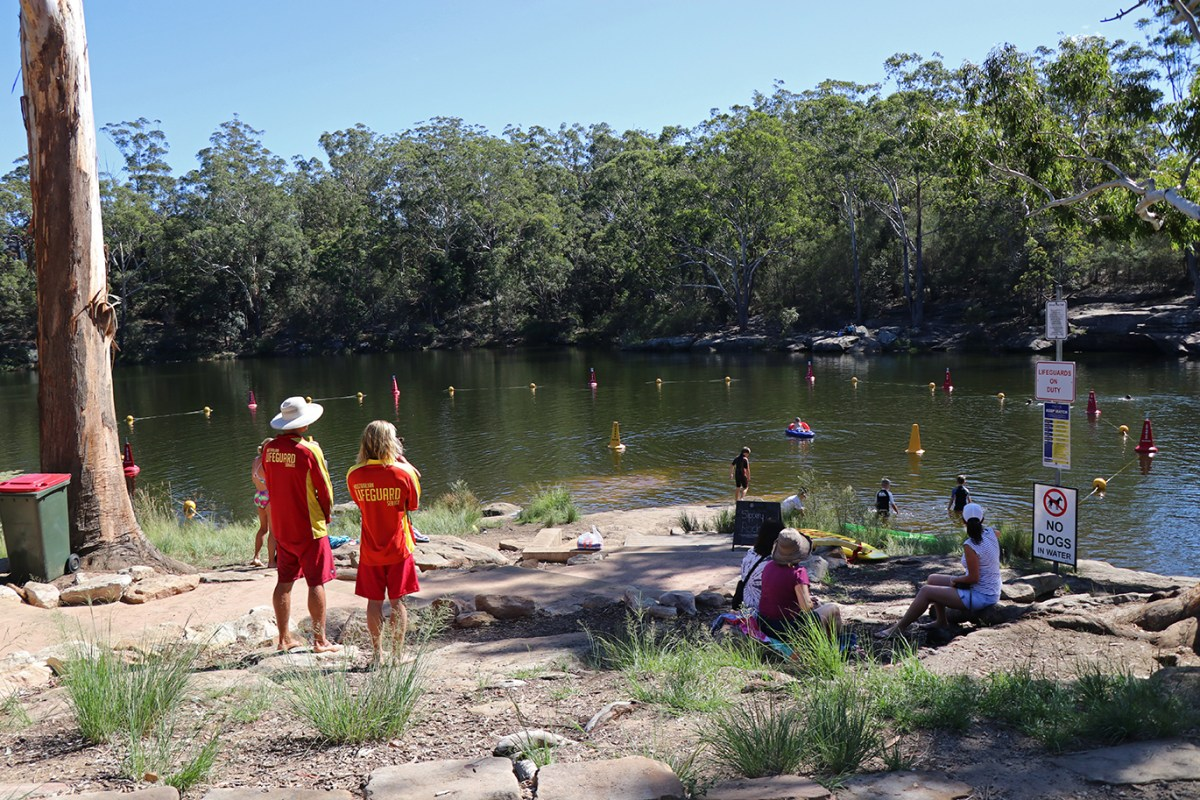 Image from Parramatta River Catchment Group